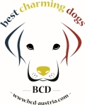shop2help.net - euroflorist AT - Best Charming Dogs